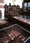 Collections permanentes du musée d'Archéologie nationale