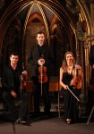 Orchestre les Violons de France