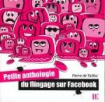 Petite Anthologie du flingage sur Facebook
