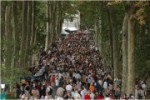 La Forêt des livres 2008