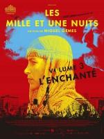 Les Mille Et Une Nuits, volume 3 : l'enchanté