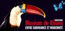 REOUVERTURE DU MUSEUM DE ROUEN