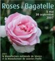 Roses à Bagatelle