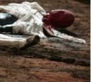 Le sang des Atrides