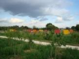 Fédération des jardins familiaux de France