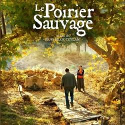 Le Poirier sauvage - Affiche