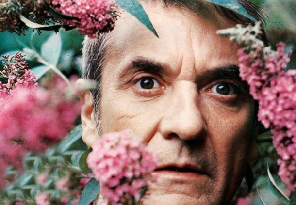 Jean Carmet en dix films
