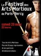 Festival des Arts Martiaux de Paris Bercy