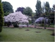 Jardin botanique de Tourcoing